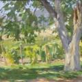 Тенистое дерево, 1959