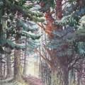 """""""Хвойный лес"""", бум.акварель, 105х80, 2013"""
