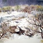 Д.Канайкина Зима